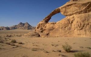 В гармонии с пустыней