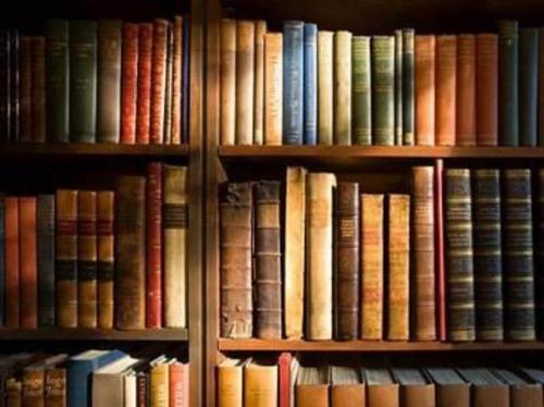 Женщина посмертно пожертвовала паркам и библиотекам 20 млн долларов