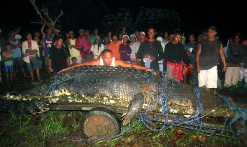 Умер самый крупный крокодил в мире